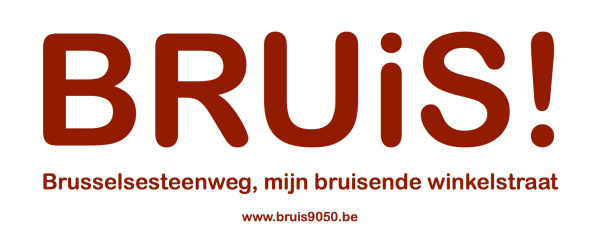bruis logo 2 pages2